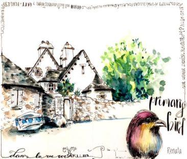 renata.coach.dessin robin and calligraphy sketch in France